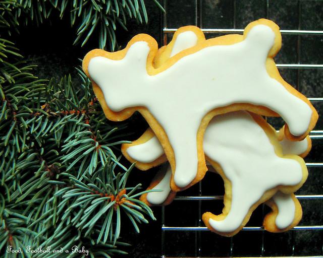 Kermode Bear Cookies