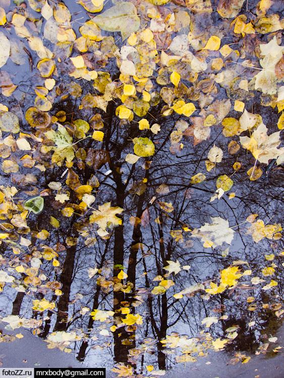 01_autumn-[20111014_5111]