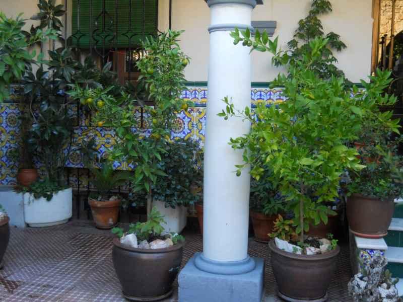 Jardín andaluz la soleá 3