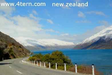 纽西兰打工度假-健康良好和行为佳