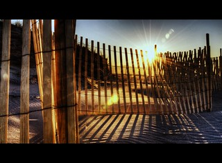 Sun, Sand and Fence - Explored ... Just Barely #490