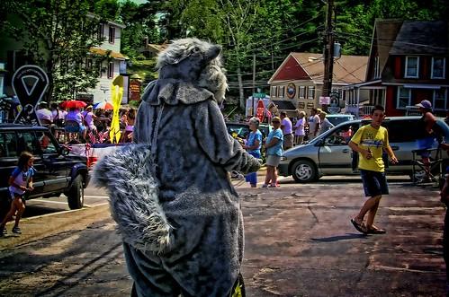 Squirrel, Woodstock, NH