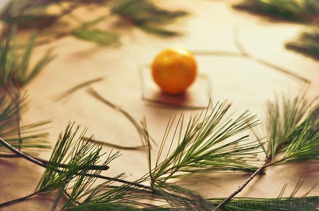 Pine Joy