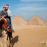 Christmas Cheer and Camel Rides - Giza Pyramids, Egypt