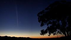 Comet Lovejoy (C/2011 W3) 24/12/2011