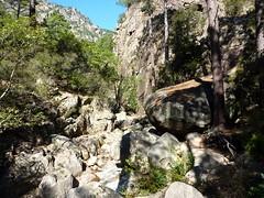 Confluence Frassiccia-Velacu : branche du Velacu et son départ rocheux ouvert