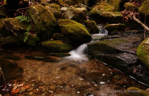 "usa mountains canon landscape rebel nc stream burke 2011 county"" gorge"" ""canon ""sigma ""north carolina"" ""project xti"" 365"" mygearandme mygearandmepremium mygearandmebronze ""burke 10mm20mm"" ""linville"