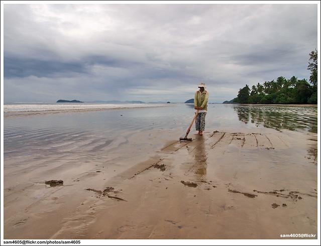 Pencari Lokan/Kepah di Pantai Beringgis, Papar