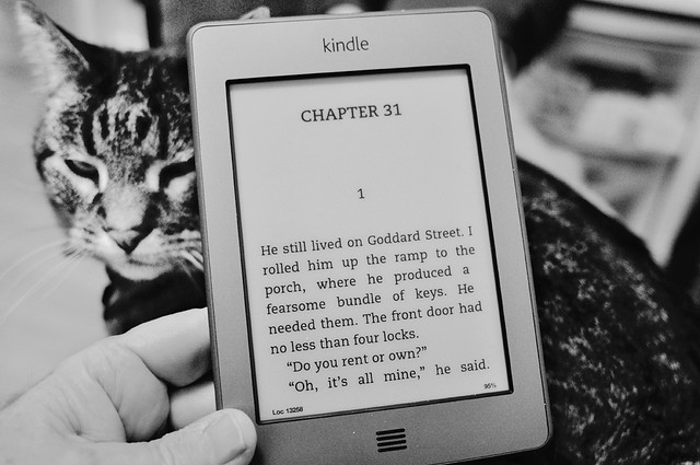 Kurled Up With Stephen King and My Kindle and My Kat