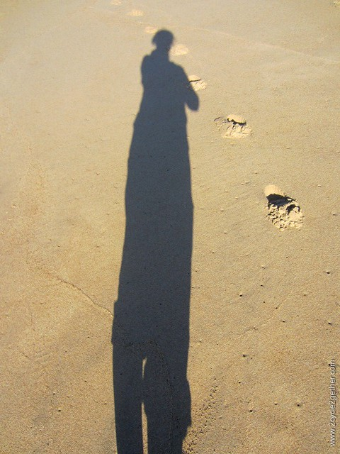 .Marina Dunes Beach : Sheila's Shadow