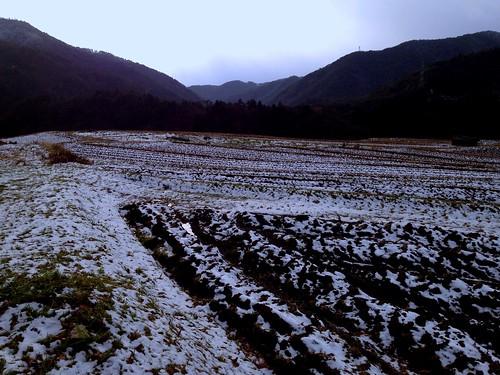 雪舞う畑 by Nakai Nakaya