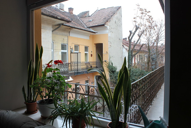 Transylvania Hostel de Cluj-Napoca
