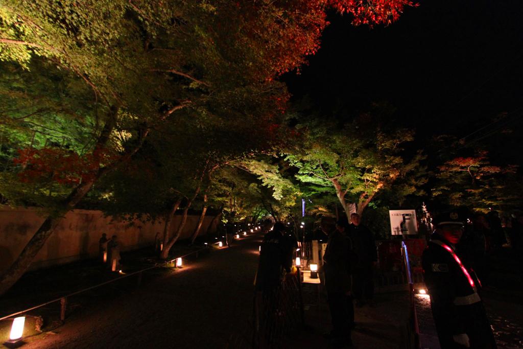 Kyoto Arashiyama tourist guide (4)