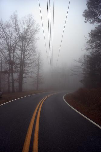 road trees mist fog rural landscape nebel scenic northcarolina wires