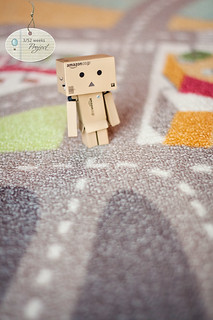 3/52 Weeks Project Danbo