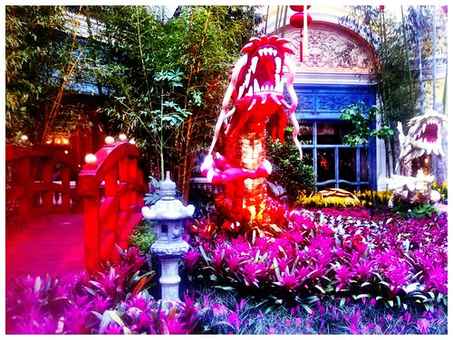 Chinese New Year at Bellagio's Conservatory