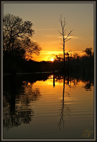 park morning lake nature sunrise reflections pond bravo texas scene bayou boardwalk pasadena bayareapark armandbayou wanam3