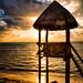 Cancun Sunrise by dfikar