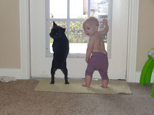 kids and pets.jpg 2