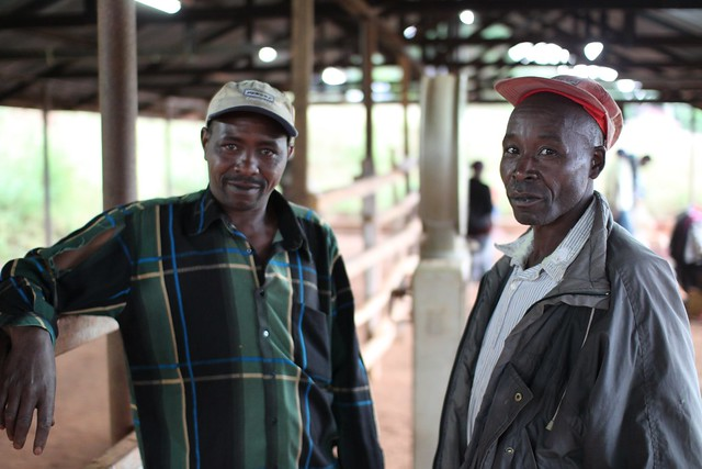 Two farmers at Kieni