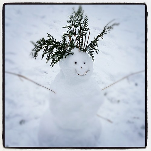 Fern-capped snowman