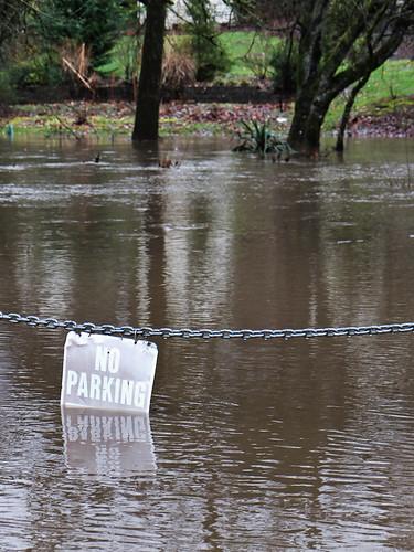 Flood-2508