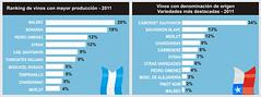 Argentina vs. Chile: El identikit de los vinos sudamericanos