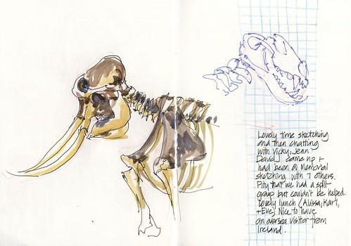 120121 Sketchcrawl 34_05 Museum Bones