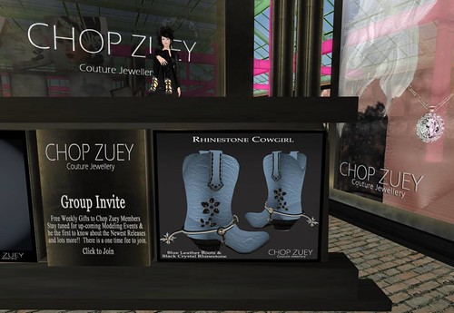 Chop Zuey Gift  - Cowgirl Boots (only members group) by Cherokeeh Asteria