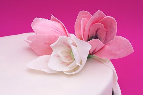 Cukrowe magnolie by CupcakeLovePL