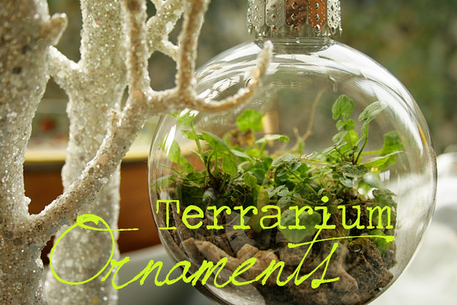- Thrifty Crafting: How To Make A Terrarium Ornament