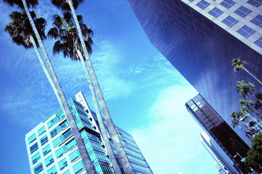 January Blues - Los Angeles, California