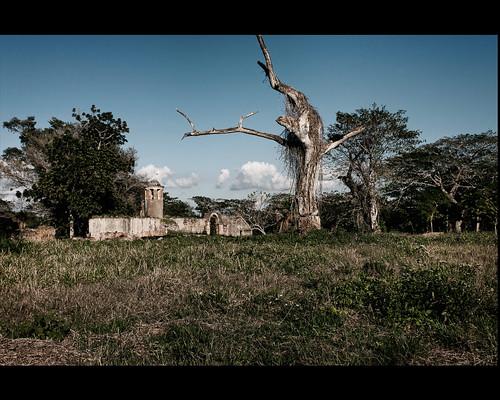 Angerona Artemisa ruins by Rey Cuba