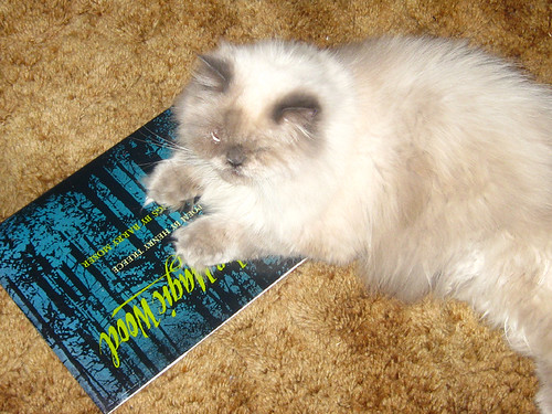 Smooch Scary Book