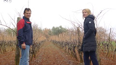 Alfredo and Melinda Cosseto in an old vineyard