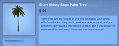 Short Skinny Sago Palm tree