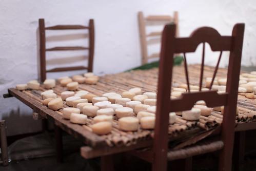 Os queijinhos de cabra da Pilar