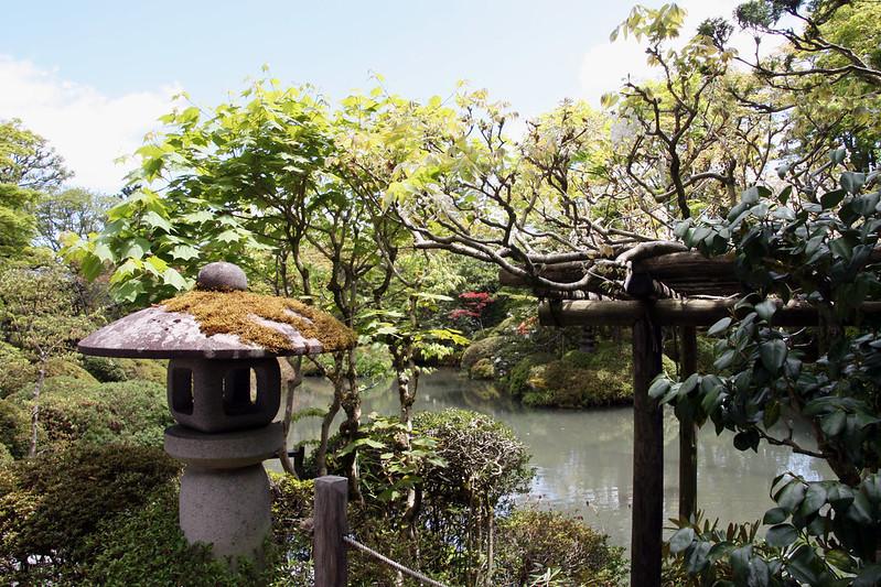 japanese garden in nara