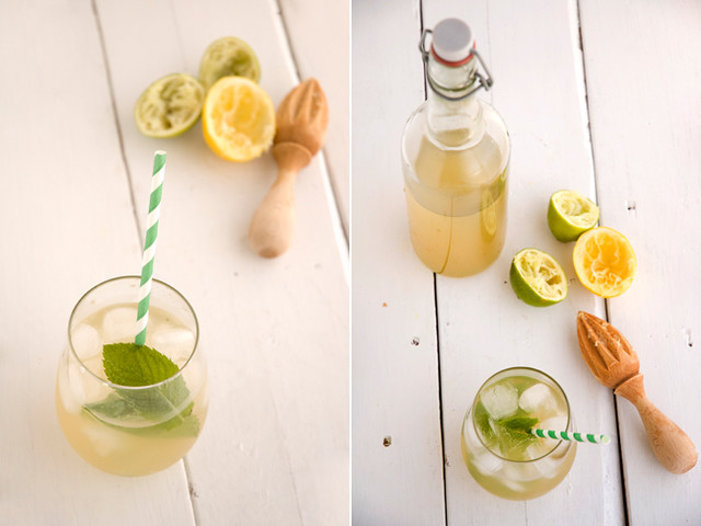 Homemade Ginger Ale Recipe -- Fermented foods taste amazing and are fabulous for your health! Try these great ideas to get your inspired! A great new years resolution!