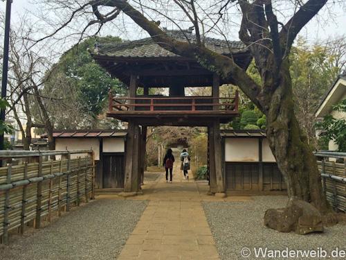 kawagoe (6 von 53)