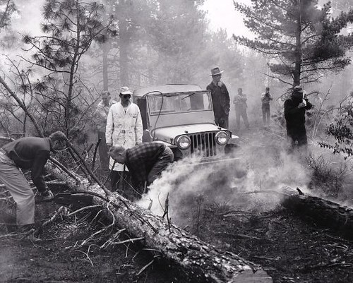 Jeep CJ-3A Brush Fire PR image by lee.ekstrom
