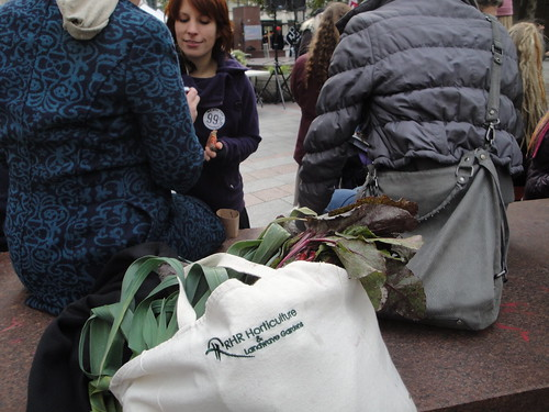 Occupy Flash Mob Produce