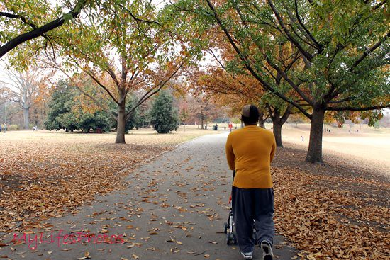 2011-Nov-20_piedmontpark111