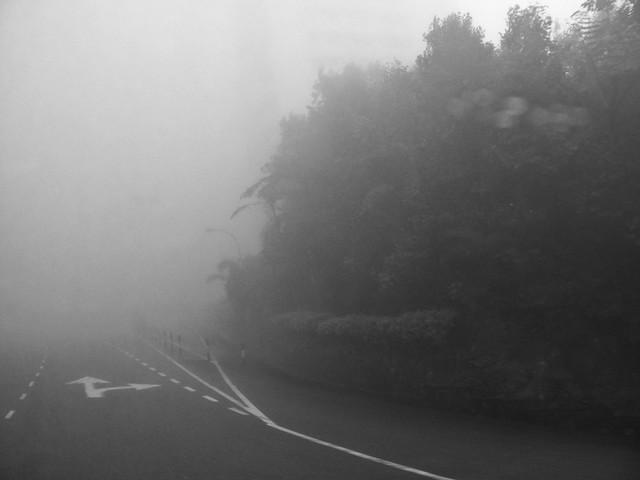 IMG_0852b Misty