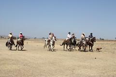 Group horseback riding Mexico