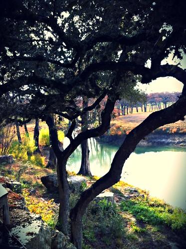 Joshua Creek in the Morning