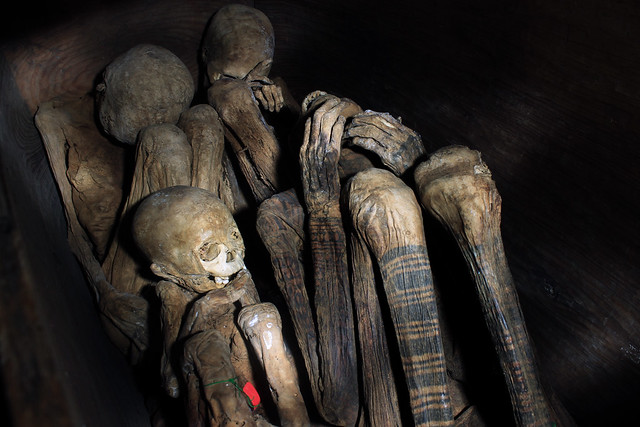 Mummies of Timbac Caves