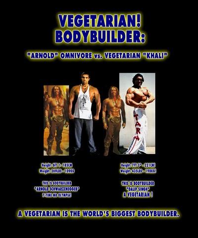 6498850009 df6cae79dd Nutritional Ideas For Successful Bodybuilding  Plans