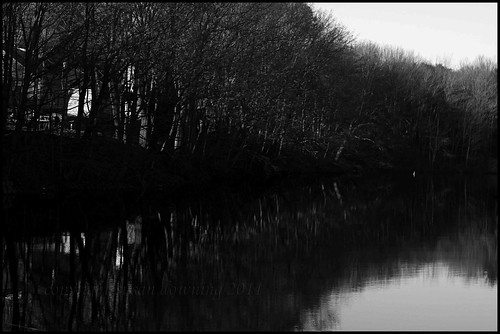 River Bank BW