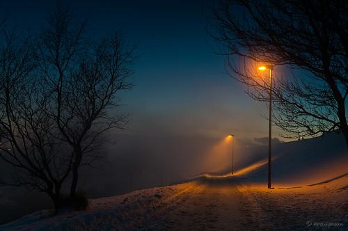 winter colors fog night iceland twilight vetur nótt litir þoka ljósaskipti hphson kópavogslækur sonyslta55